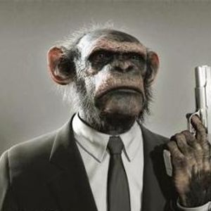 Cheeky Chimp Disco Vol 8 - Chimped Out With A Gangster Twist