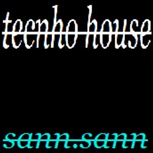 25-1-13 techno house sann.sann