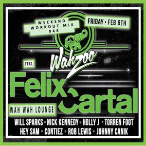 Felix Cartal - Wahzoo Workout 2