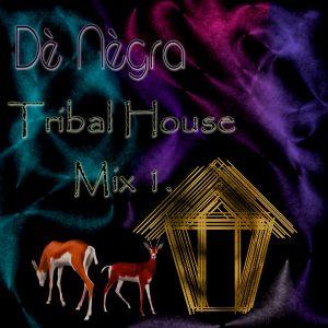 Tribal House Mix 1.