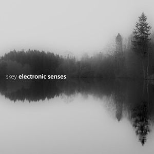 #385: Skey / Electronic Senses