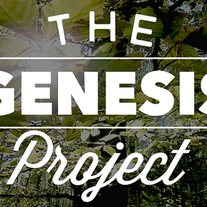 The Genesis Project Pt.9