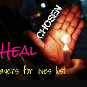 HEAL:  A tribute to all lives lost !
