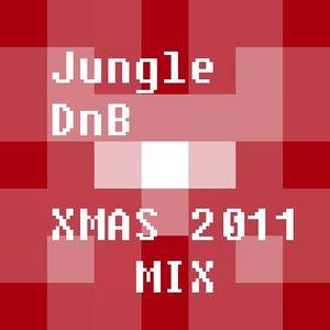 Random Order DnB/Jungle Winter 2011 Mixmash