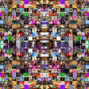 DJ GROG FROG - Feel My Vibes 2012 Mix