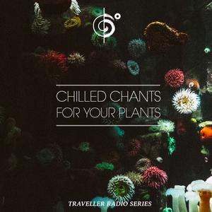Traveler's Chilled Chants For Your Plants