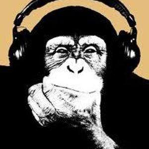 Primate Beats mixed by Gaucho (a.k.a. Dr Flavaz)