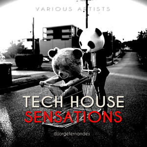 TECH HOUSE SENSATIONS