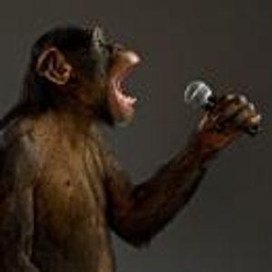 MonkeyTrain2.12.14!!!;))