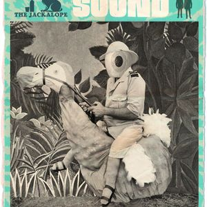 Sight and Sound are going on Safari