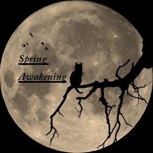 Marsel May - Spring Awakening 001