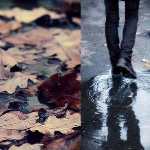 November Rainy Morning
