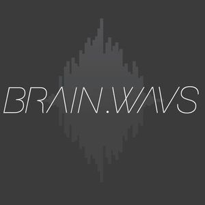 Brain.wavs- Something to Say (Live Mix)