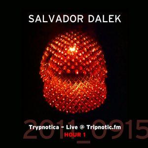Day 055.02 : ReFresh - Salvador Dalek Live (2011_0915) at Tripnotic.fm... Hour 1