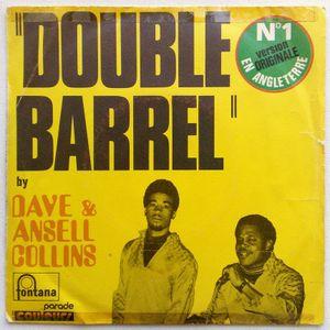33 - Double barrel