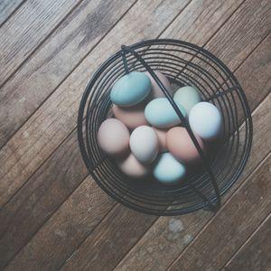 GVP #20: Easter, Squatty Potty and Joe Deitzer