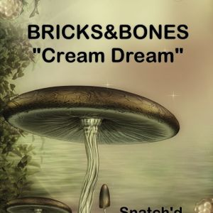 "CreamDream-""TheBricks&BonesShow""-July-Part-1"