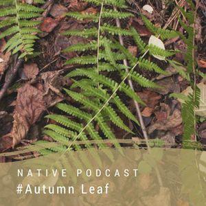Native podcast #4 - Autumn Leaf