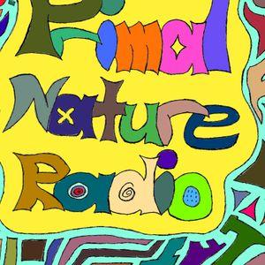 Firebug - Primal Nature Radio 008