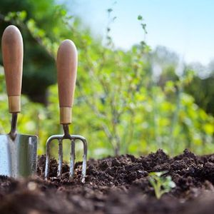 Ask Sarah with @Savvy_woman, talking to @NSALG and @ruthiemeech about gardens and gardening.