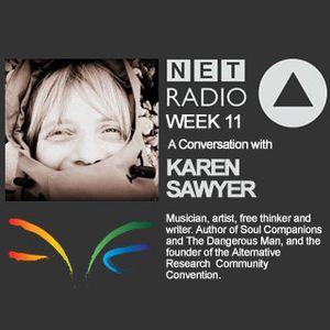 Week 11 - Conversation with Karen Sawyer