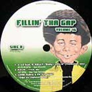 fillin the gap