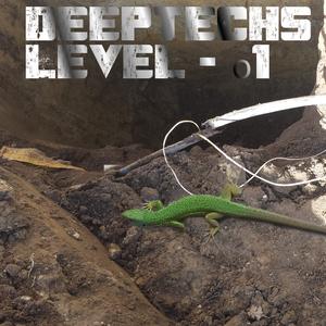 DeepTechs - Level o1
