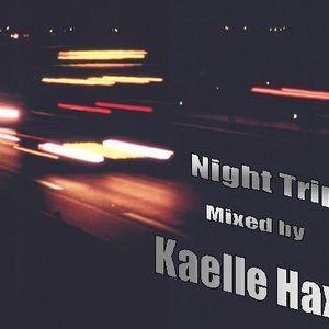 "26/09/2010 - ""Night Trip"""