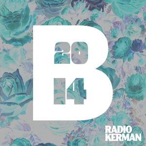 RadioKerman - The Best of (indie) 2014