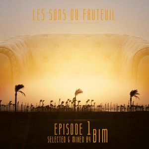 Episode #1 LSDF - BIM