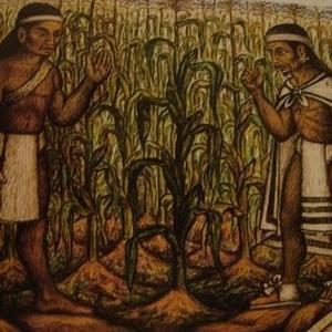 Lo Nuestro: EL Maíz en el Antiguo Folclor.