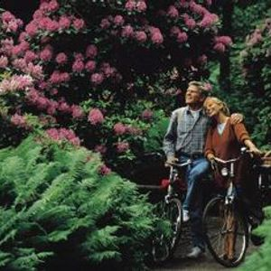 Our Rhododendronic Love[2001-04-28_10h19m27.mp3(211.4MB)]