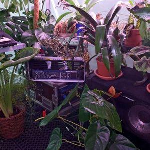 W.E.L.T. Show 001 -  The Secret Life Of Plants