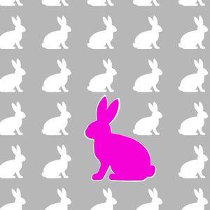 Where's the Fucking Rabbit