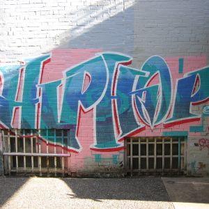 Jus A Lil Hip Hop