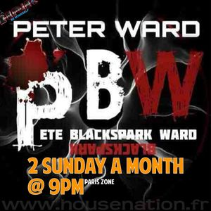 Pete Ward spring show on HOUSE NATION RADIO 27-03-16