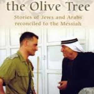 Julia Fisher, author of Meet me at the Olive Tree