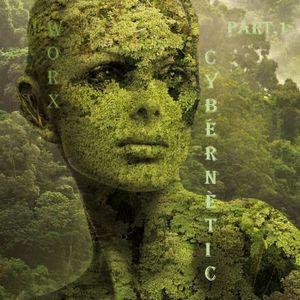 djWorx Cybernétic Part.1
