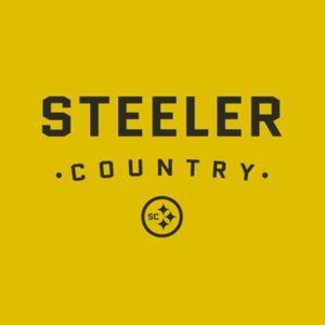 184: Week Fifteen 2016, Steelers 24 Bengals 20