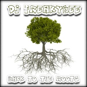 DJ FreakyBee Back To The Rootz