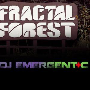 Emergent+C - Fractal Forest Groove & Funk Mix Part 3
