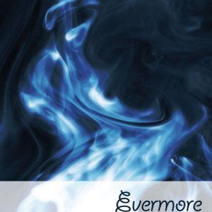evermore records - Progressive 11 01