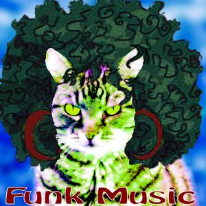 009 – Assez Funky ! Vol. 1 [Musique atmosphérique du Québec]