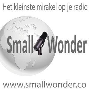 Small Wonder week 25 2017