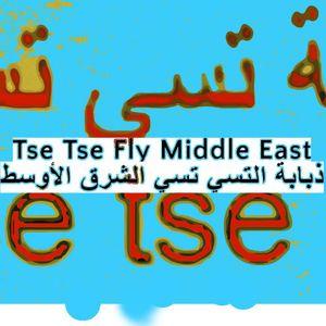 Tse Tse Fly Middle East - 6th December 2017