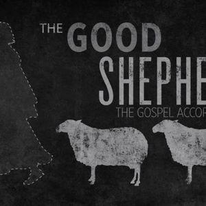 The Good Shepherd, pt 2