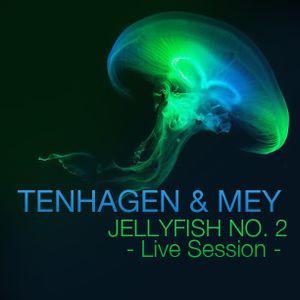 Jellyfish No.2 /w Tenhagen & Mey (Live Session)