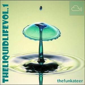 The Liquid Life Vol. 1