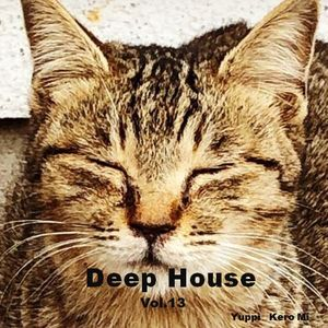 Cafe Gatto / Deep House Vol.13