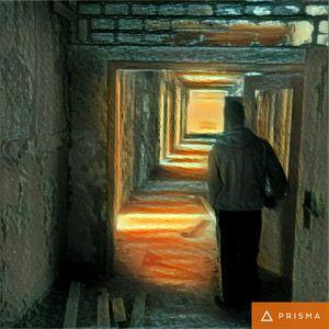 Spielwiese Proggie-Twilight-Psytrance-Set